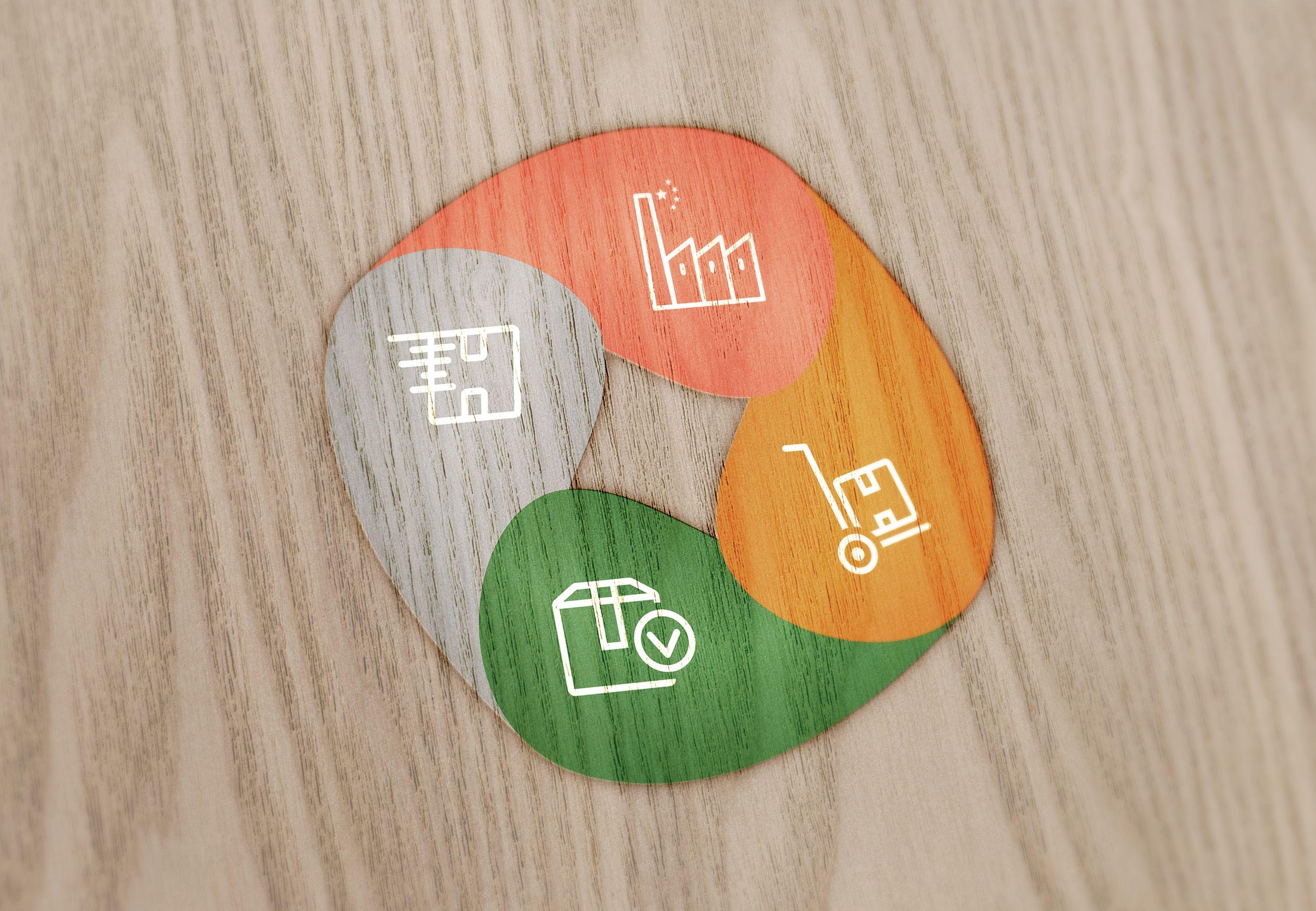 rolipro_logo_1